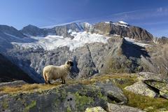 Furtschagelhaus © Naturpark Zillertaler Alpen